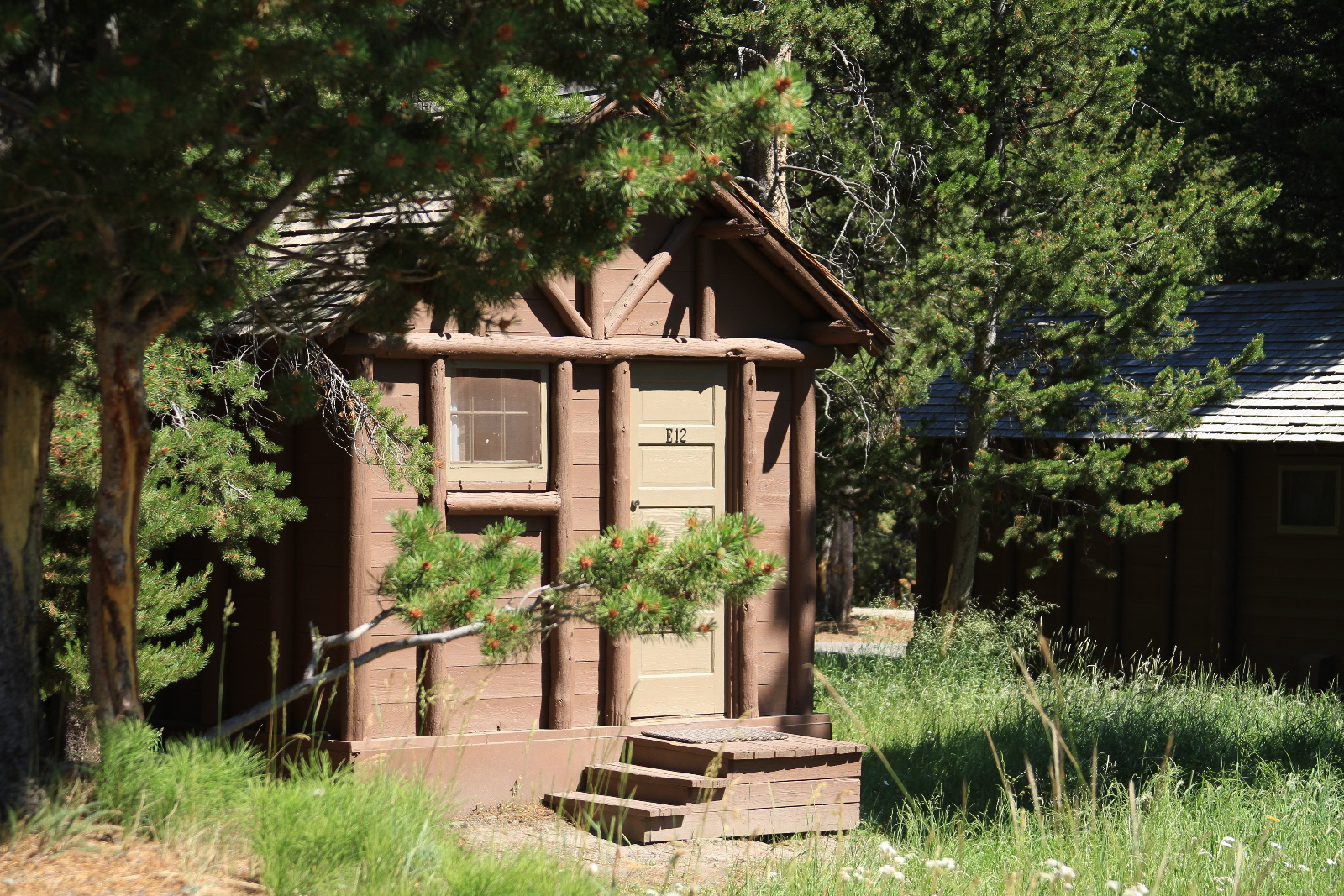 Lake Lodge Cabins Yellowstone Reservations